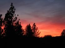 Sunset in Murphys